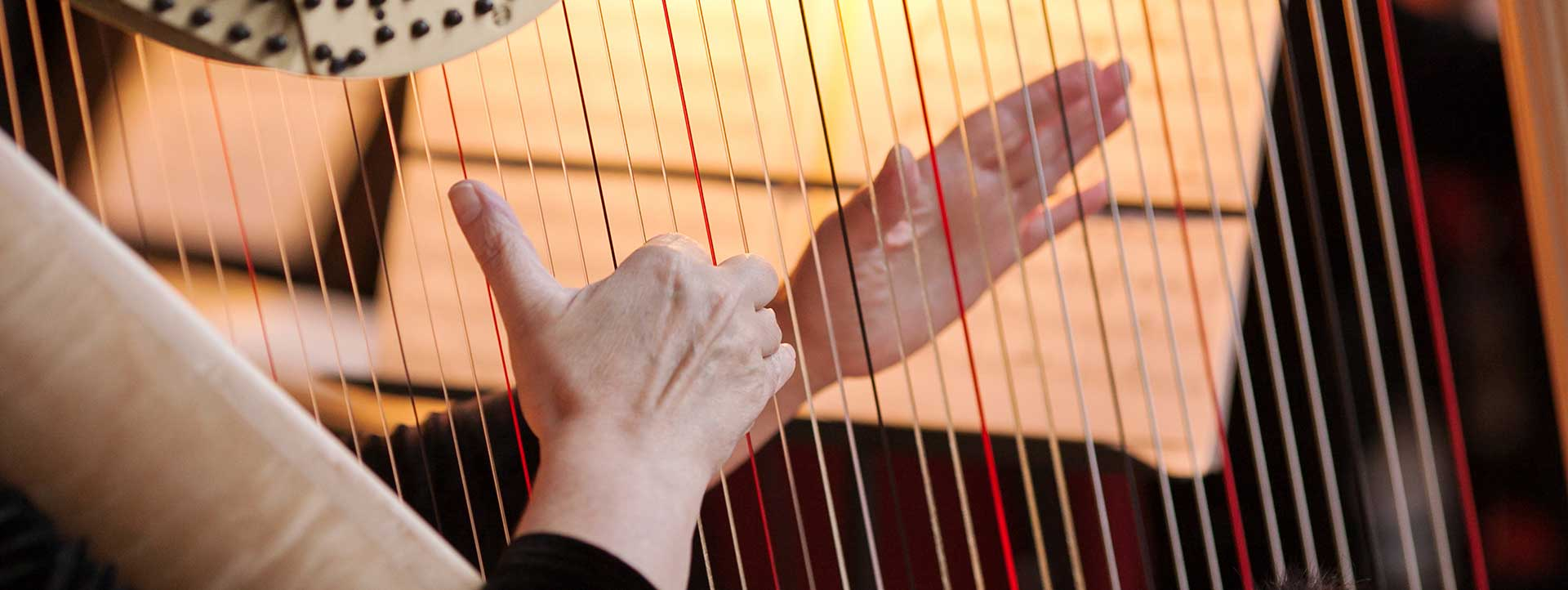 Vibroacoustic Harp Therapy Program (VAHT)